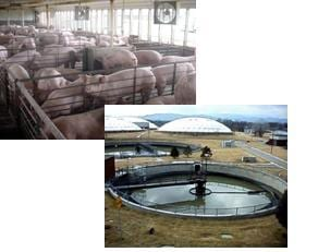Emerging contaminants can originate from a variety of animal- and human-waste sources such as this hog production facility and this wastewater treatment plant. Photos courtesy of the U.S. Geological Survey.