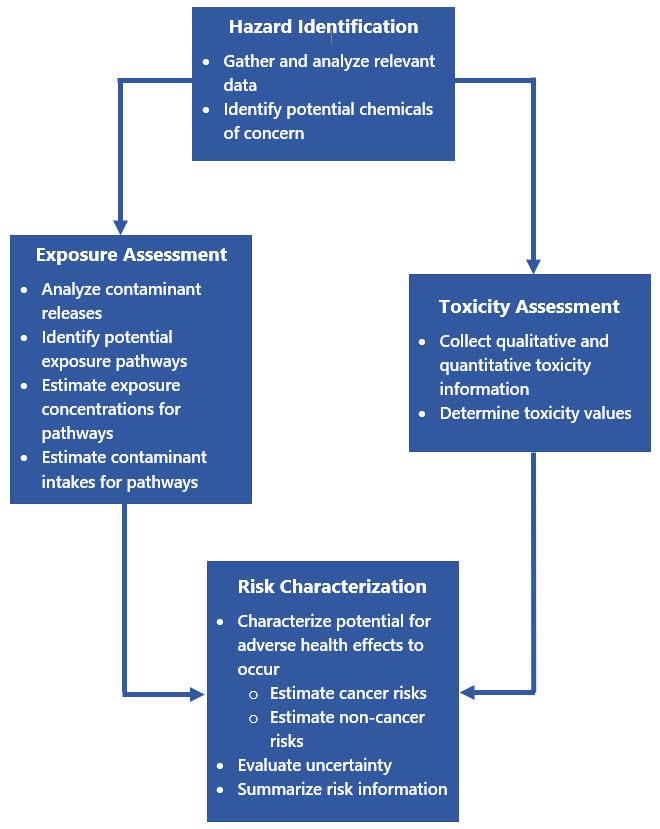 HHRA Process flowchart - description follows the image